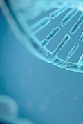 研究发现基因在身体对运动的反应中起着重要作用
